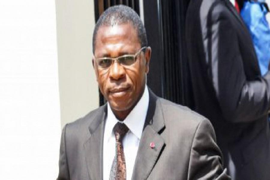 Cameroun- Prochain Gouvernement; Paul Atanga Nji : L'homme du président