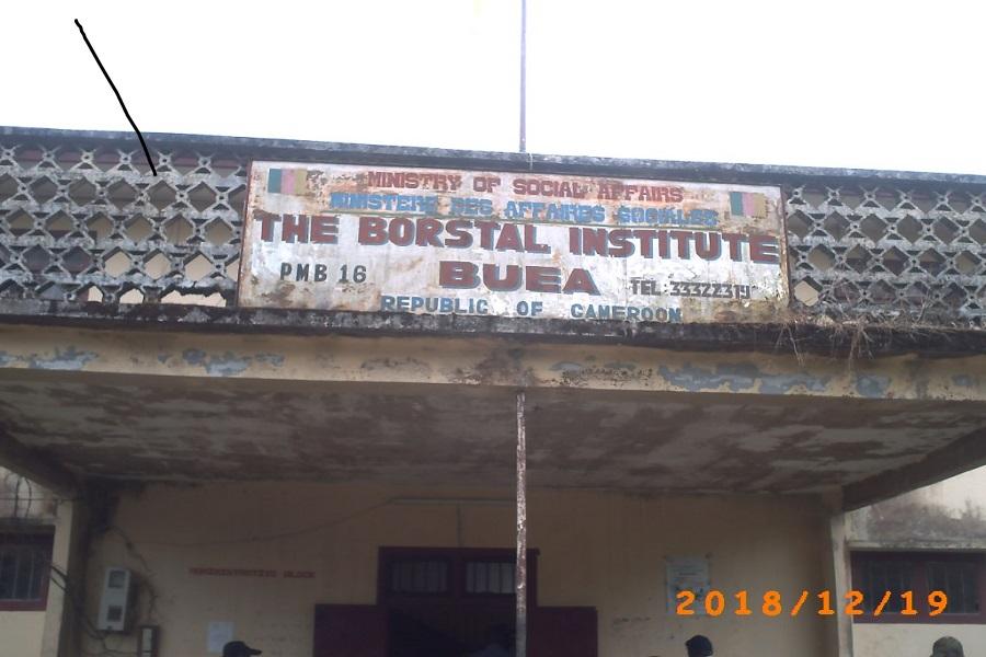 Cameroun-commission de désarmement : un centre de réhabilitation créé a Buea.