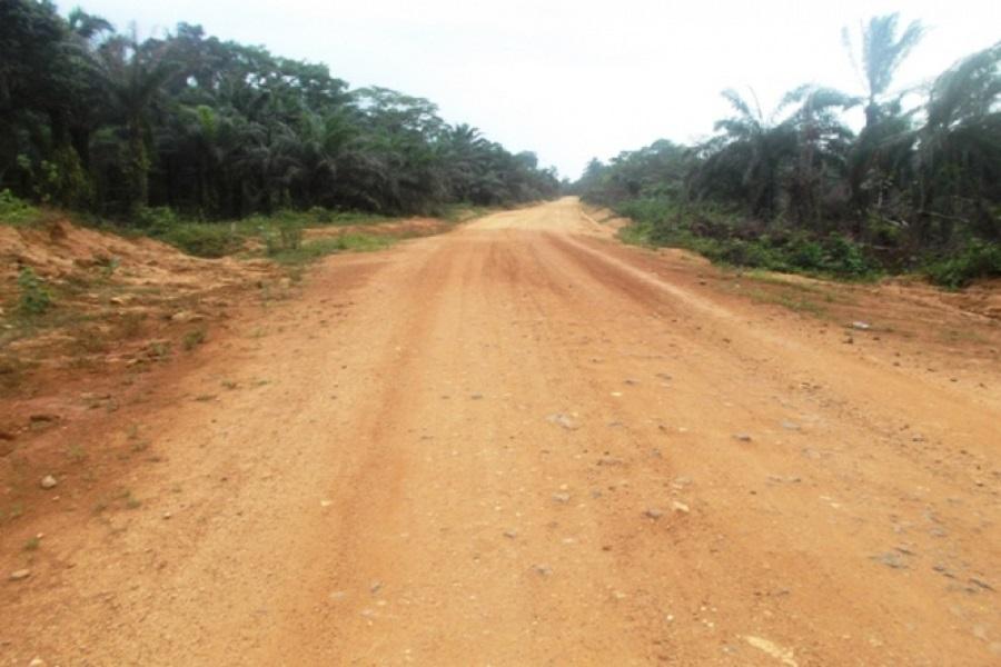 Cameroun-crise anglophone : le  Fon de Wat libéré de captivité