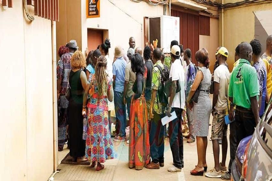 Cameroun-Droits d'auteurs : Les artistes passent à la caisse (154 millions pour environ 1500 artistes)