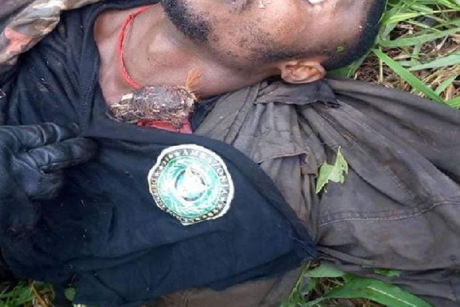Cameroun-Crise anglophone : Lourdes pertes humaines aux rangs des séparatistes