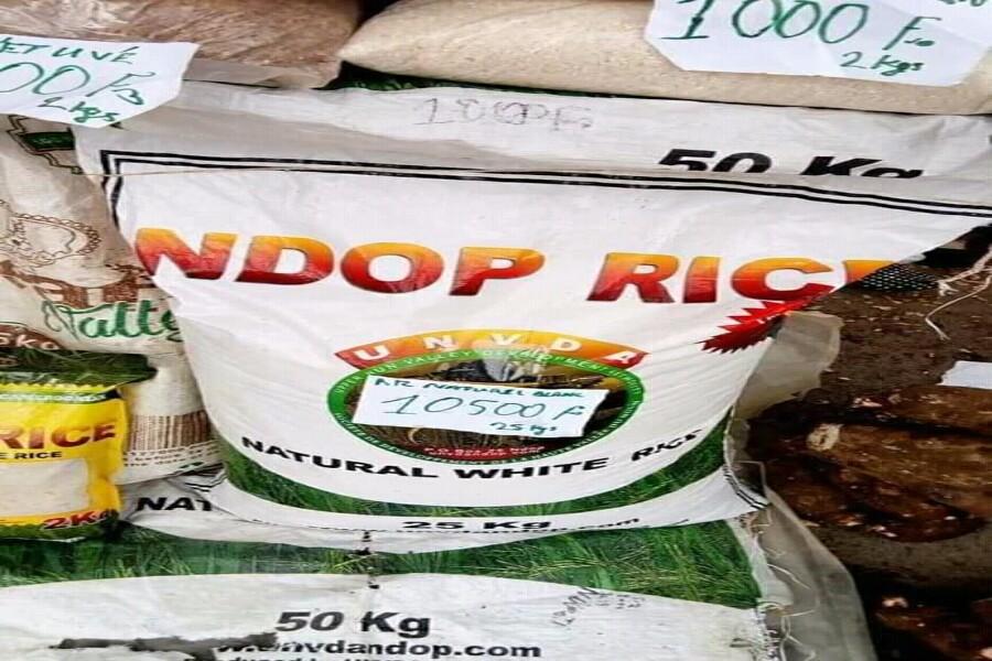 Cameroun – Agriculture : après la polémique du riz en plastique, focus sur le Ndop Rice 100% camerounais