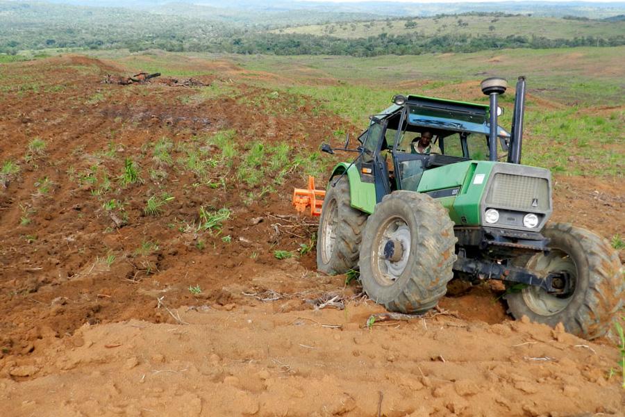 Région de l'ouest: La ville de Bangangté abrite le lancement de la campagne agricole 2019