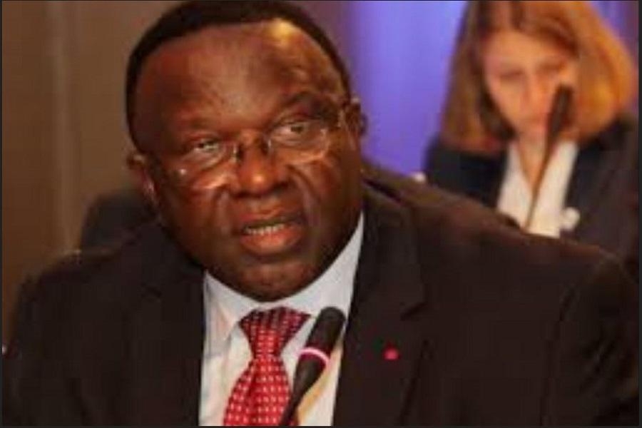 Cameroun: L'ancien ministre, le Pr Elvis Ngolle Ngolle organise les séminaires pour « fidéliser » les militants du RDPC