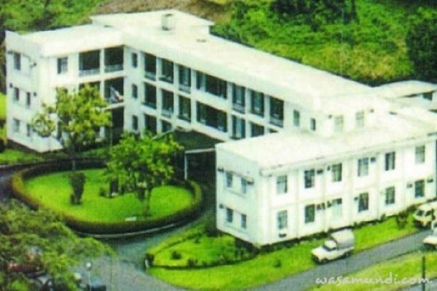Cameroun-gestion publique : l'Etat au secours des employés de la CDC