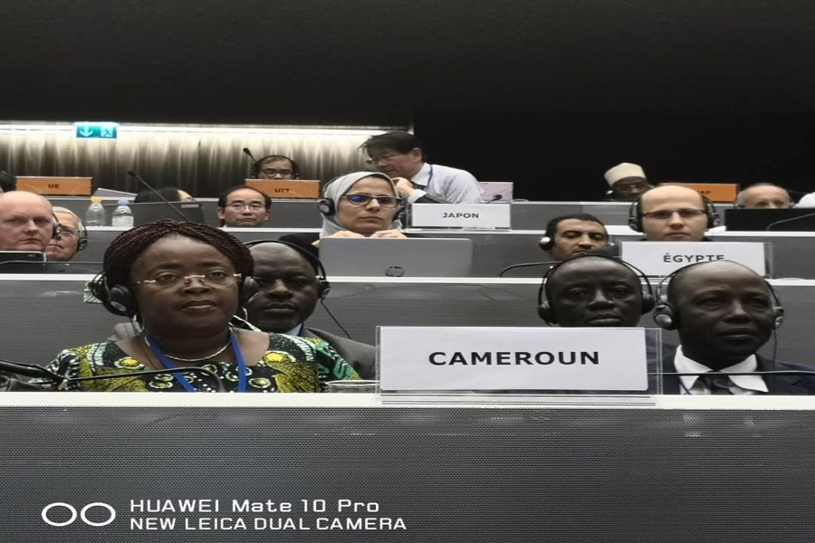 3e Congrès extraordinaire de l'Union postale universelle (UPU) : Le Cameroun postule pour la vice-direction générale